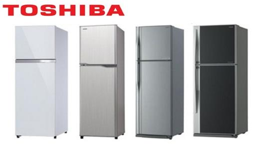 Harga Kulkas 2 Pintu Toshiba
