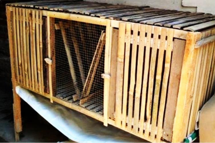 Kandang Kelinci dari Bambu
